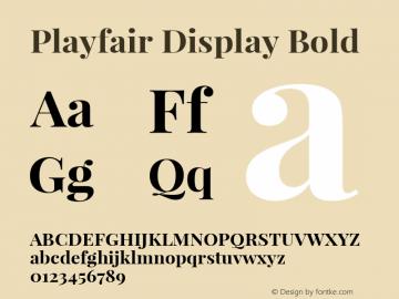 Playfair Display Bold Version 1.003;PS 001.003;hotconv 1.0.70;makeotf.lib2.5.58329图片样张