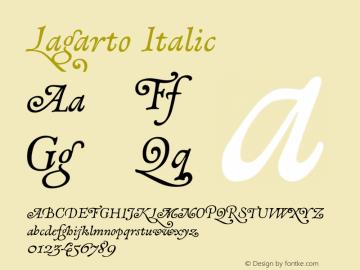 Lagarto-Italic Version 1.000;PS 001.000;hotconv 1.0.88;makeotf.lib2.5.64775图片样张