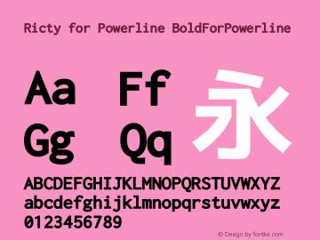 Ricty Bold for Powerline Version 3.2.3图片样张