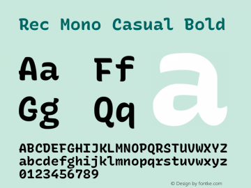 Rec Mono Casual Bold Version 1.074图片样张