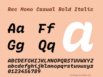 Rec Mono Casual Bold Italic Version 1.074图片样张