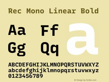 Rec Mono Linear Bold Version 1.074图片样张