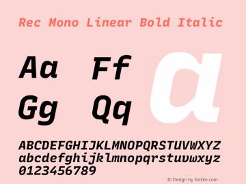 Rec Mono Linear Bold Italic Version 1.074图片样张