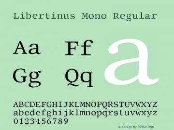Libertinus Mono Regular Version 7.040;RELEASE图片样张