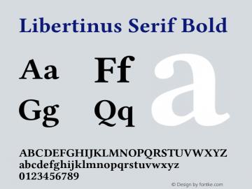 Libertinus Serif Bold Version 7.040;RELEASE图片样张