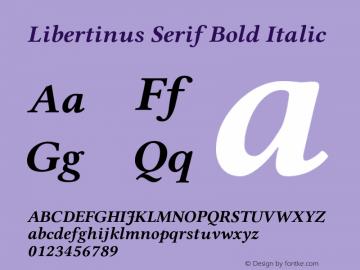 Libertinus Serif Bold Italic Version 7.040;RELEASE图片样张