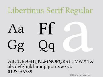 Libertinus Serif Regular Version 7.040;RELEASE图片样张