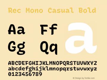 Rec Mono Casual Bold Version 1.075图片样张