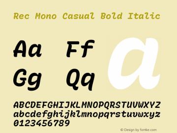 Rec Mono Casual Bold Italic Version 1.075图片样张