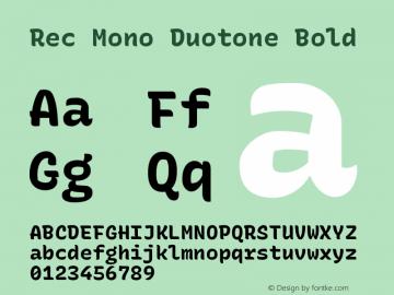 Rec Mono Duotone Bold Version 1.075图片样张