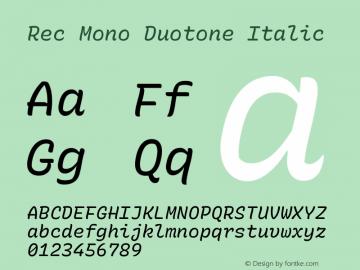 Rec Mono Duotone Italic Version 1.075图片样张