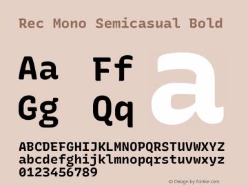 Rec Mono Semicasual Bold Version 1.075图片样张