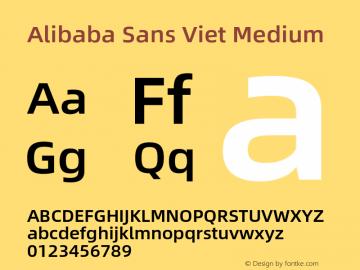 Alibaba Sans Viet Medium Version 1.00图片样张