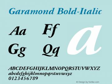Garamond Font,Garamond Bold-Italic Font,GaramondBold-Italic