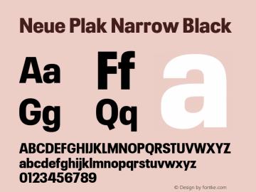 Neue Plak Narrow Black 1.00, build 9, s3图片样张