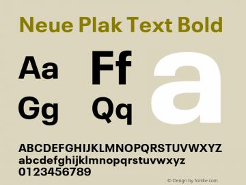 Neue Plak Text Bold 1.10, build 13, s3图片样张