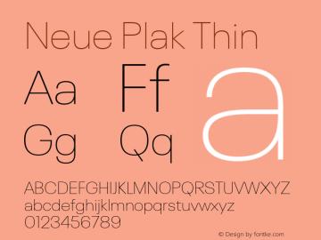 Neue Plak Thin 1.00, build 9, s3图片样张