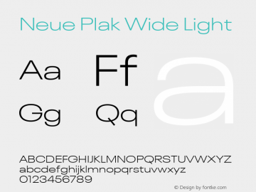 Neue Plak Wide Light 1.00, build 9, s3图片样张
