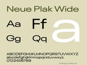 Neue Plak Wide 1.00, build 9, s3图片样张