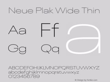 Neue Plak Wide Thin 1.00, build 9, s3图片样张
