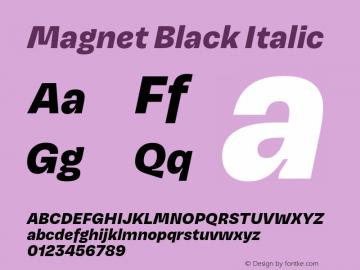 Magnet-BlackItalic Version 1.001;PS 1.000;hotconv 16.6.51;makeotf.lib2.5.65220图片样张