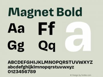 Magnet-Bold Version 1.001;PS 1.000;hotconv 16.6.51;makeotf.lib2.5.65220图片样张
