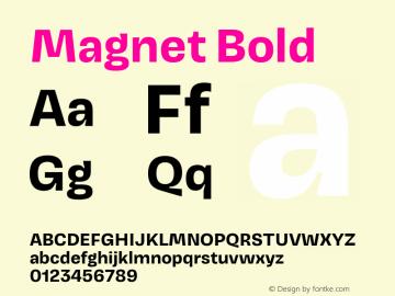 Magnet Bold Version 1.001;PS 1.000;hotconv 16.6.51;makeotf.lib2.5.65220图片样张