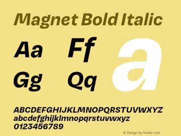 Magnet-BoldItalic Version 1.001;PS 1.000;hotconv 16.6.51;makeotf.lib2.5.65220图片样张