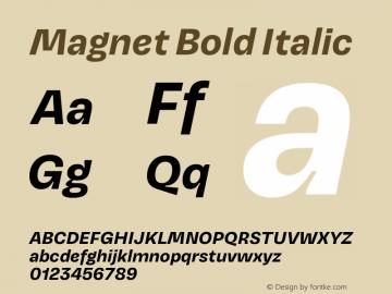 Magnet Bold Italic Version 1.001;PS 1.000;hotconv 16.6.51;makeotf.lib2.5.65220图片样张