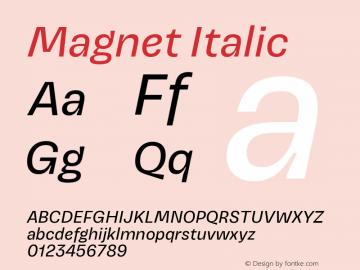 Magnet Italic Version 1.001;PS 1.000;hotconv 16.6.51;makeotf.lib2.5.65220图片样张