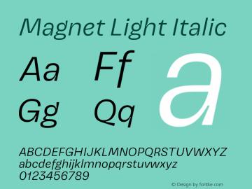 Magnet Light Italic Version 1.001;PS 1.000;hotconv 16.6.51;makeotf.lib2.5.65220图片样张
