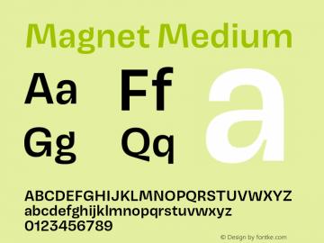 Magnet-Medium Version 1.001;PS 1.000;hotconv 16.6.51;makeotf.lib2.5.65220图片样张
