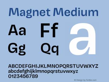 Magnet Medium Version 1.001;PS 1.000;hotconv 16.6.51;makeotf.lib2.5.65220图片样张