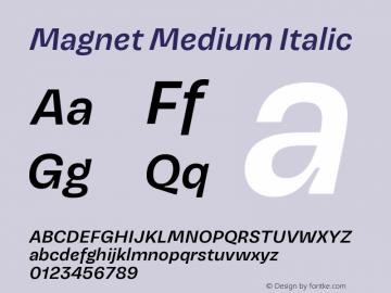 Magnet Medium Italic Version 1.001;PS 1.000;hotconv 16.6.51;makeotf.lib2.5.65220图片样张