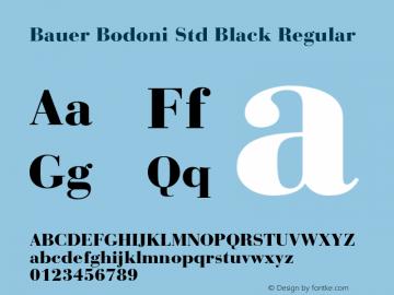 Bauer Bodoni Std Black Regular OTF 1.029;PS 001.001;Core 1.0.33;makeotf.lib1.4.1585图片样张