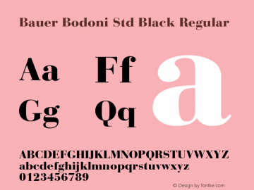 Bauer Bodoni Std Black Regular Version 2.030;PS 002.000;hotconv 1.0.51;makeotf.lib2.0.18671图片样张