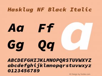 Hasklug Black Italic Nerd Font Complete Mono Windows Compatible Version 1.052;hotconv 1.0.117;makeotfexe 2.5.65602图片样张
