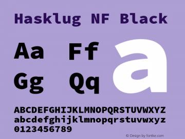 Hasklug Black Nerd Font Complete Mono Windows Compatible Version 2.032;hotconv 1.0.117;makeotfexe 2.5.65602图片样张