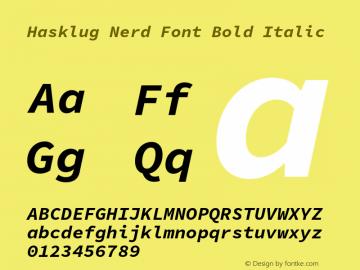 Hasklug Bold Italic Nerd Font Complete Version 1.052;hotconv 1.0.117;makeotfexe 2.5.65602图片样张