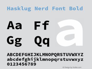 Hasklug Bold Nerd Font Complete Version 2.032;hotconv 1.0.117;makeotfexe 2.5.65602图片样张
