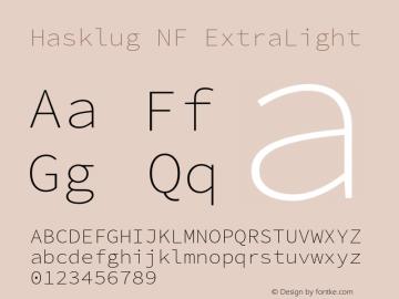 Hasklug ExtraLight Nerd Font Complete Windows Compatible Version 2.032;hotconv 1.0.117;makeotfexe 2.5.65602图片样张