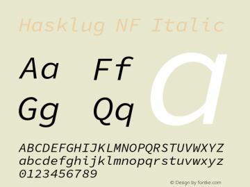 Hasklug Italic Nerd Font Complete Windows Compatible Version 1.052;hotconv 1.0.117;makeotfexe 2.5.65602图片样张