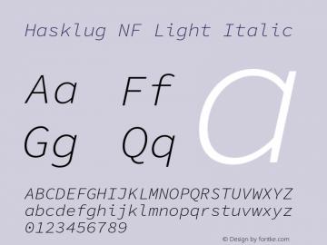 Hasklug Light Italic Nerd Font Complete Windows Compatible Version 1.052;hotconv 1.0.117;makeotfexe 2.5.65602图片样张