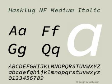 Hasklug Medium Italic Nerd Font Complete Mono Windows Compatible Version 1.052;hotconv 1.0.117;makeotfexe 2.5.65602图片样张