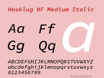 Hasklug Medium Italic Nerd Font Complete Windows Compatible Version 1.052;hotconv 1.0.117;makeotfexe 2.5.65602图片样张