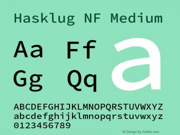 Hasklug Medium Nerd Font Complete Windows Compatible Version 2.032;hotconv 1.0.117;makeotfexe 2.5.65602图片样张