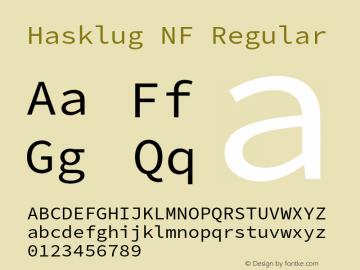 Hasklug Nerd Font Complete Windows Compatible Version 2.032;hotconv 1.0.117;makeotfexe 2.5.65602图片样张
