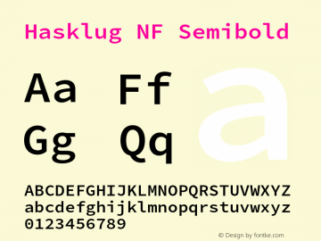 Hasklug Semibold Nerd Font Complete Mono Windows Compatible Version 2.032;hotconv 1.0.117;makeotfexe 2.5.65602图片样张