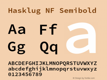 Hasklug Semibold Nerd Font Complete Windows Compatible Version 2.032;hotconv 1.0.117;makeotfexe 2.5.65602图片样张