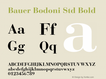 Bauer Bodoni Std Bold Version 1.040;PS 001.003;Core 1.0.35;makeotf.lib1.5.4492图片样张